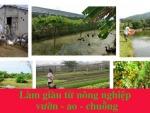 Những cách làm giàu từ nông nghiệp hiệu quả nhất