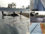 Nông nghiệp nhanh chia sẽ địa chỉ bán màng chống thấm HDPE Solmax Thái Lan, Sunco Việt Nam