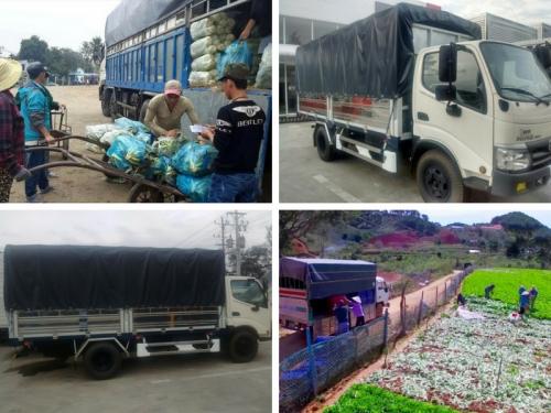 Những dòng xe vận chuyển nông sản phổ biến được tin dùng, 200, Mãnh Nhi , Nông Nghiệp Nhanh, 16/05/2018 10:34:29